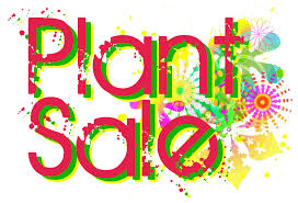 Garden Plant Sale and Coffee Morning